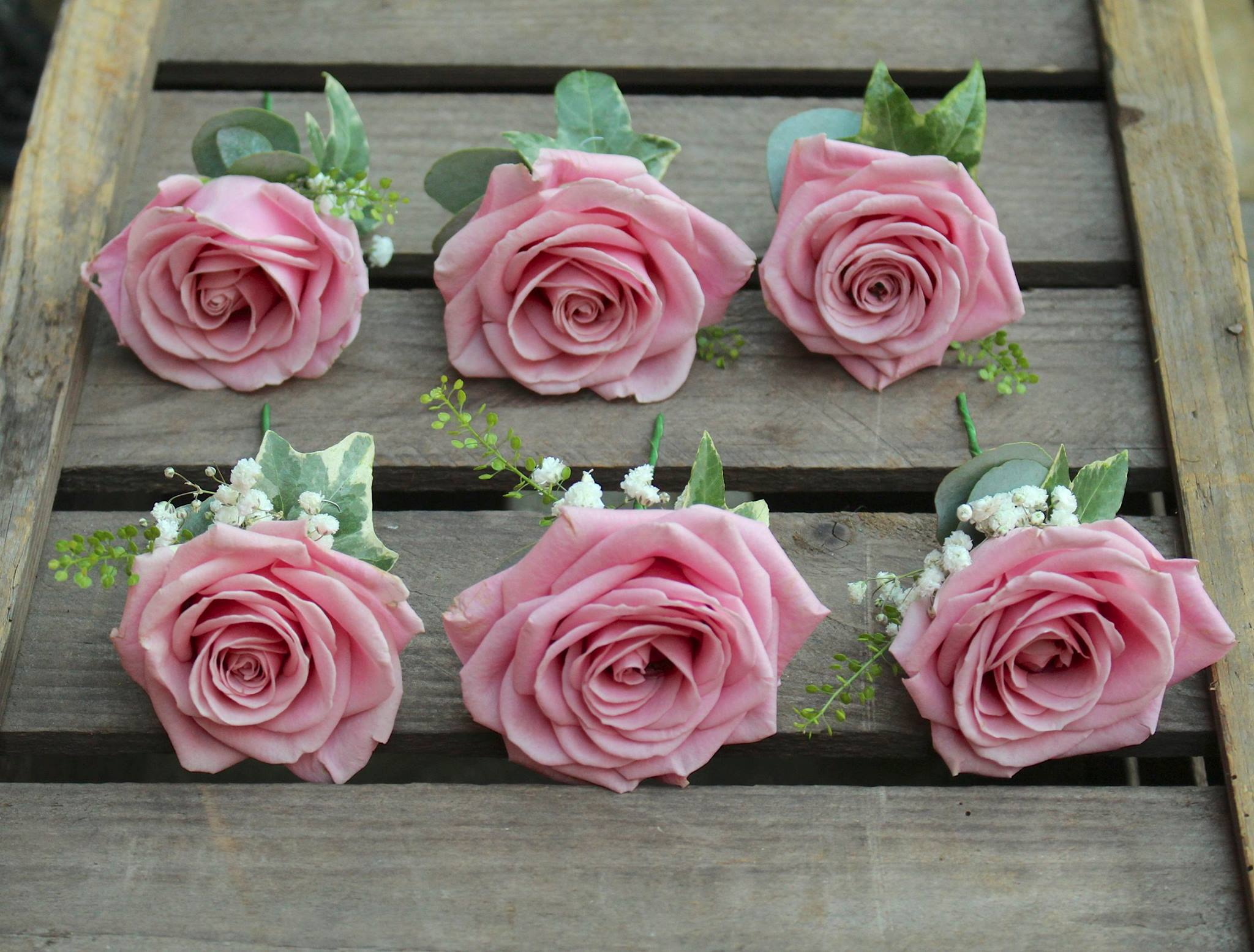 Dusky Pink Roses Stemsations